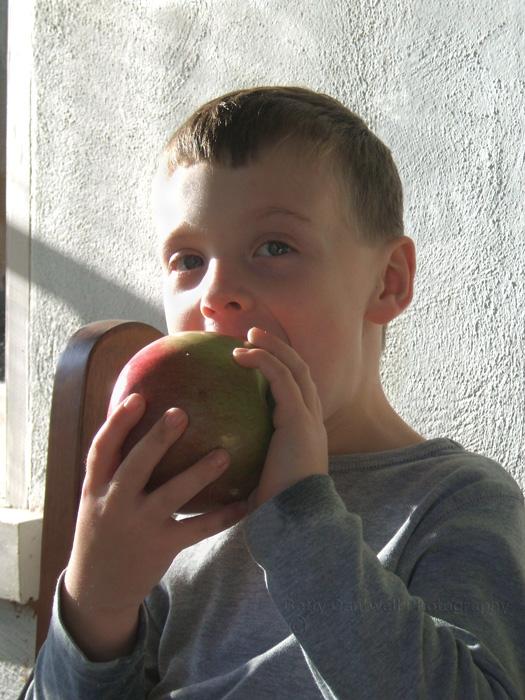 apple-boy